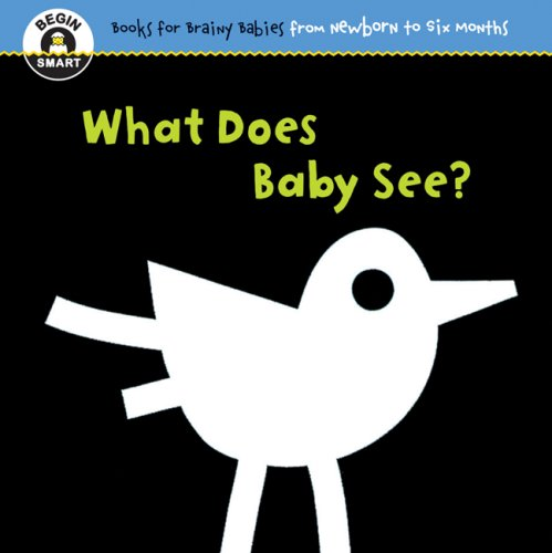 9781934618011: Begin Smart What Does Baby See?