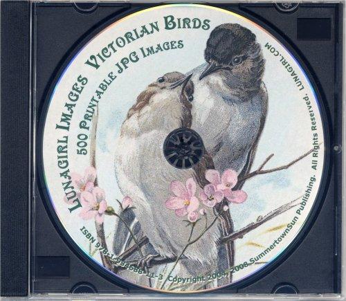 9781934688113: Victorian Birds - 500 antique greeting cards, scraps, die cuts, antique labels, paintings, nature prints & illustrations