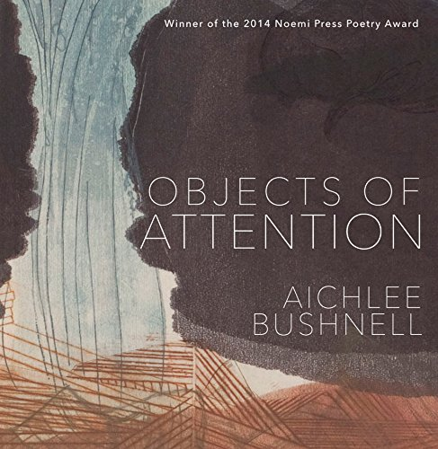 9781934819500: Objects of Attention