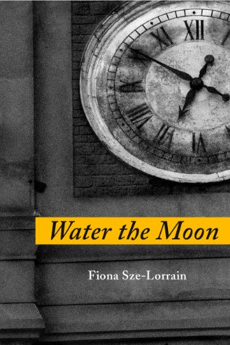 9781934851128: Water the Moon