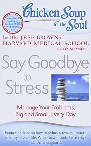 9781935096887: Chicken Soup for the Soul: Say Goodbye to Stress: Manage Your Problems, Big and Small, Every Day