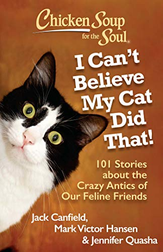 9781935096924: Chicken Soup for the Soul: I Can't Believe My Cat Did That!: 101 Stories about the Crazy Antics of Our Feline Friends