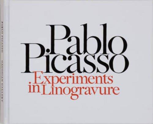 9781935263050: Pablo Picasso: Experiments in Linogravure