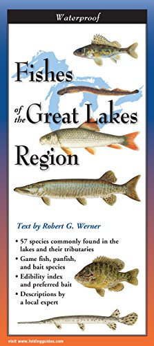 Fishes of the Great Lakes Region (Foldingguides): Werner, Robert G.