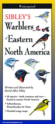 9781935380559: Sibley's Warblers of Eastern North America (Foldingguides)