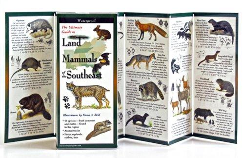 9781935380580: Land Mammals of the Southeast: Folding Guide (Foldingguides)