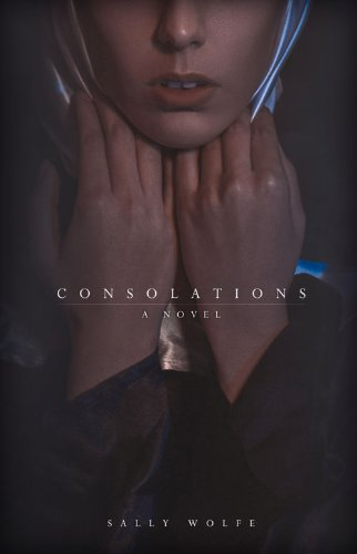Consolations: A Novel: Wolfe, Sally