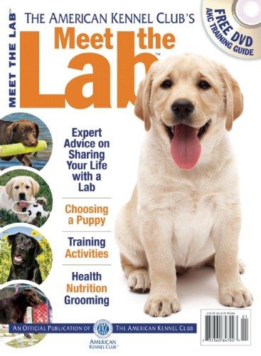 9781935484707: Meet the Lab (AKC Meet the Breed Series)