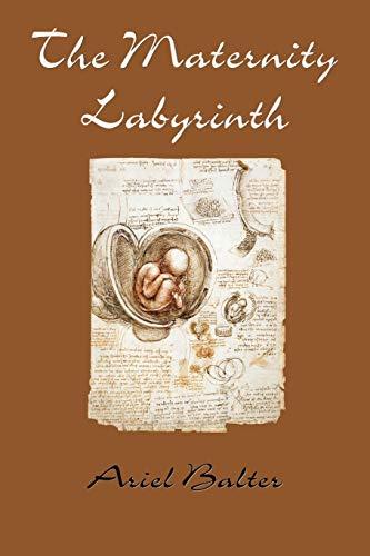 9781935514541: The Maternity Labyrinth