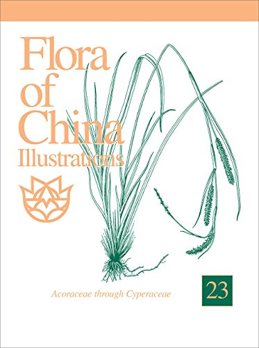 9781935641025: Flora of China, Illustrations, Volume 23, Acoraceae through Cyperaceae