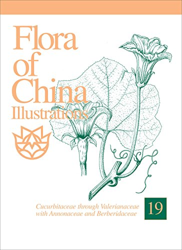 9781935641032: Flora of China, Illustrations, Volume 19, Cucurbitaceae through Valerianaceae with Annonaceae and Berberidaceae