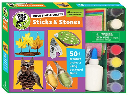 9781935703846: Super Simple Crafts: Sticks and Stones (PBS Kids)
