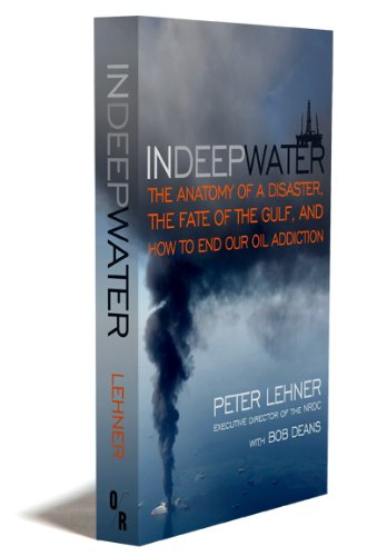 9781935928096: In Deep Water: The Anatomy of a Disaster, the Fate of the Gulf, and How to End Our Oil Addiction