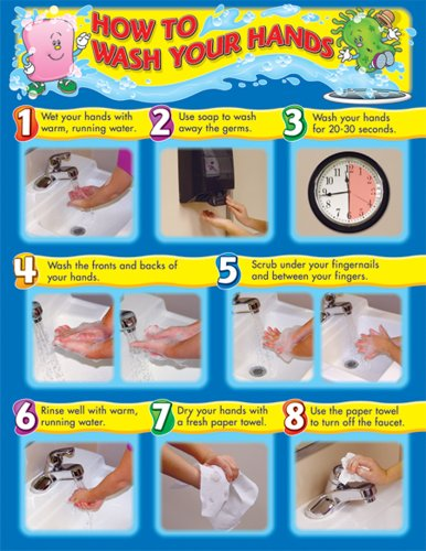 9781936024506: How to Wash Your Hands Chart