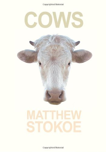 9781936070701: Cows (Little House on the Bowery)