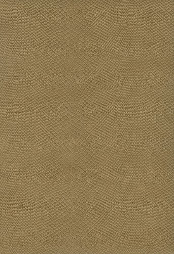 9781936119172: Thompson Answer Bible - KJV - Simulated Leather Wet Sand
