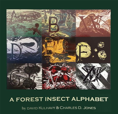 9781936205707: Forest Insect Alphabet