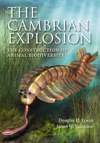 9781936221035: The Cambrian Explosion: The Construction of Animal Biodiversity