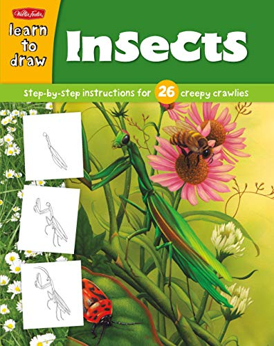 9781936309528: Learn to Draw Insects: Learn to Draw and Color 26 Insects, Step by Easy Step, Shape by Simple Shape!