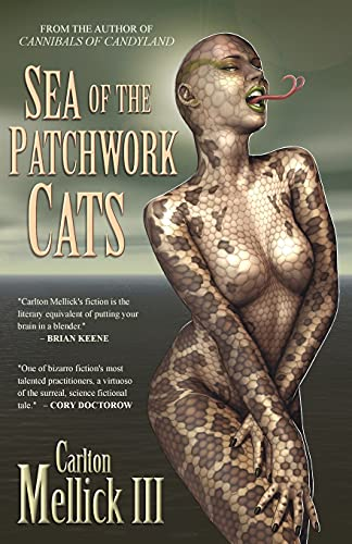 9781936383993: Sea of the Patchwork Cats