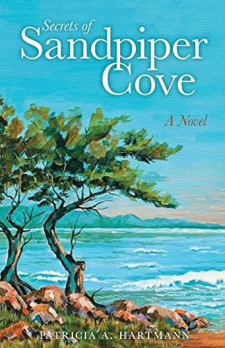 9781936401581: Secrets of Sandpiper Cove - A Novel