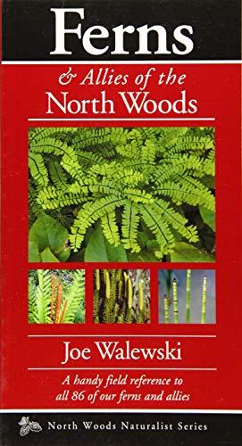 Ferns of the North Woods: Including Horsetails & Clubmosses (Naturalist Series): Joe Walewski