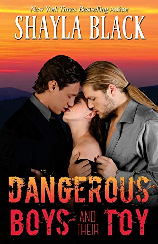 9781936596201: Dangerous Boys and their Toy