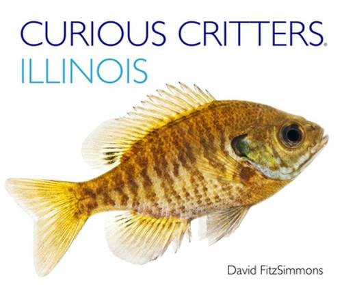 9781936607334: Curious Critters Illinois (Curious Critters Board Books)