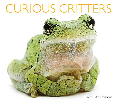 Curious Critters: David FitzSimmons