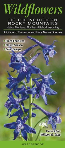 9781936913121: Wildflowers of the Northern Rocky Mountains: Idaho, Montana, Northern Utah, & Wyoming: A Guide to Common & Rare Native Species