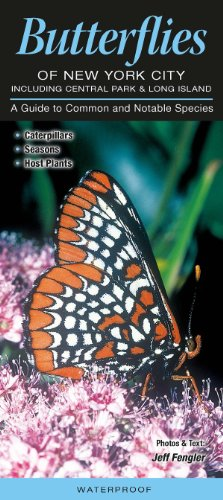 9781936913176: Butterflies of New York City, incl. Central Park & Long Island: A Guide to Common & Notable Species