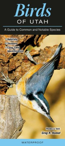 9781936913268: Birds of Utah: A Guide to Common & Notable Species (Common and Notable Species)