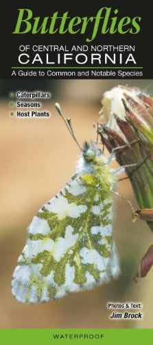 Butterflies of Central & Northern California: A Guide to Common & Notable Species: Jim ...