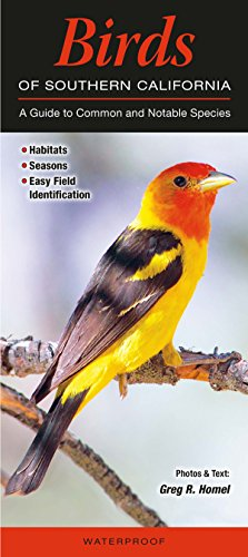 9781936913954: Birds of Southern California: A Guide to Common & Notable Species (Quick Reference Guides)