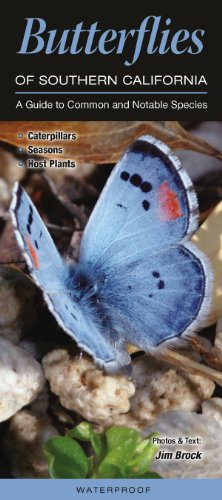 9781936913978: Butterflies of Southern California: A Guide to Common & Notable Species (Quick Reference Guides)