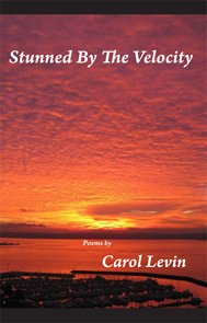 Stunned By The Velocity: Levin, Carol