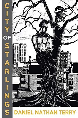 9781937420864: City of Starlings