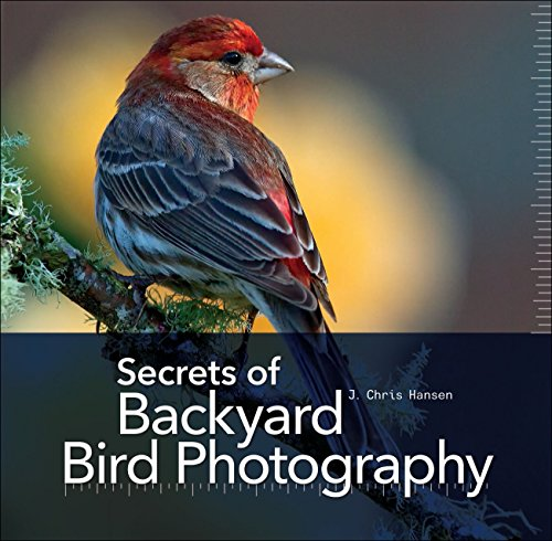 9781937538552: Secrets of Backyard Bird Photography