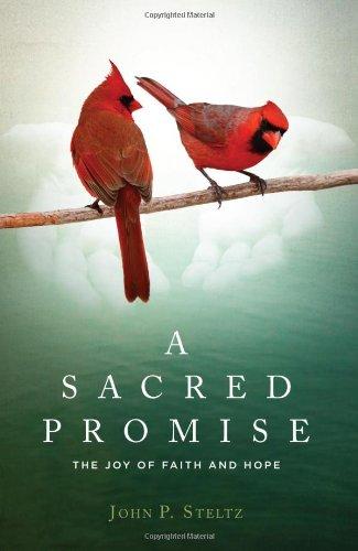 A Sacred Promise: Steltz, John P.