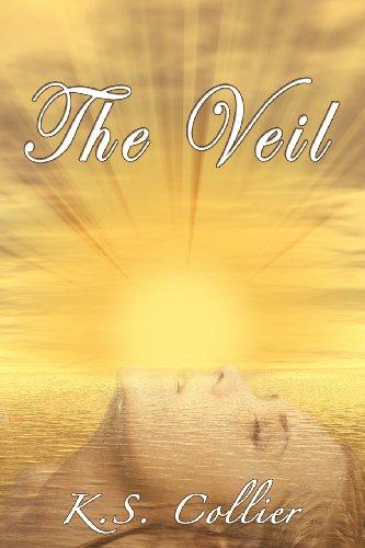 9781937698331: The Veil