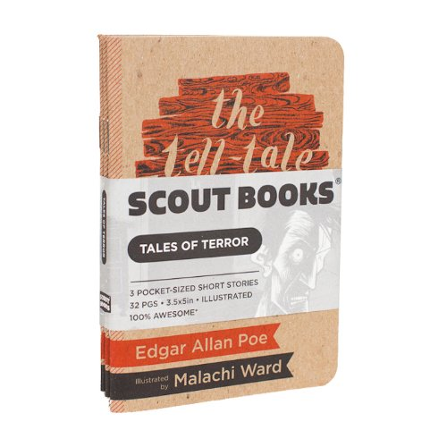 9781937852696: Scout Books Tales of Terror: The Fall of the House of Usher, William Wilson, and The Tell-Tale Heart 3 Pack (3.5