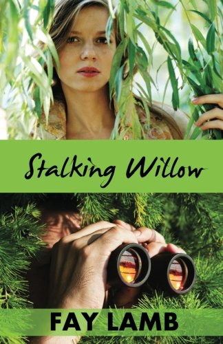 9781938092367: Stalking Willow (Amazing Grace) (Volume 1)