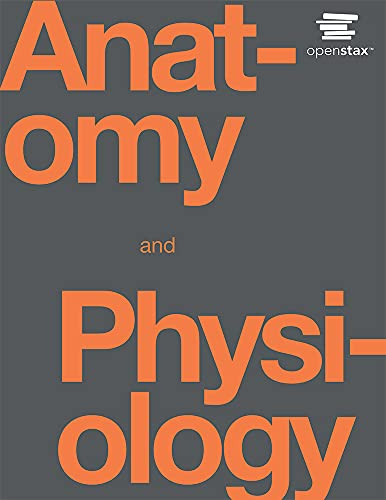 9781938168130: Anatomy & Physiology