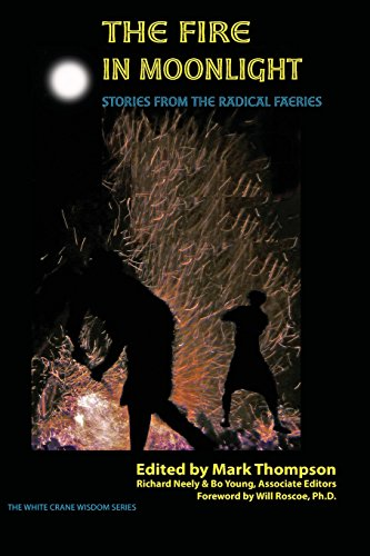 9781938246043: The Fire in Moonlight: Stories from the Radical Faeries 1971 - 2010