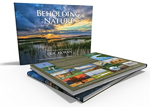 9781938417290: Beholding Nature
