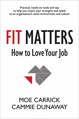 9781938548741: Fit Matters: How to Love Your Job