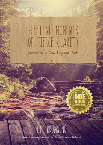 9781938846014: Fleeting Moments of Fierce Clarity: Journal of a New England Poet