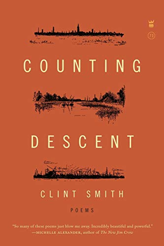 9781938912658: Counting Descent