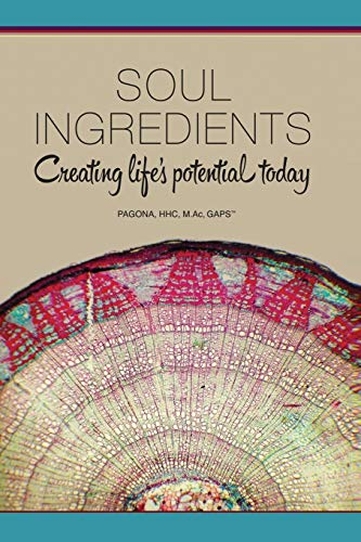 9781939166173: Soul Ingredients: Creating Life's Potential Today