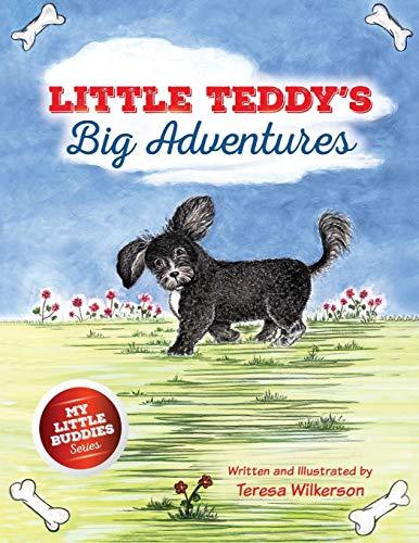 Little Teddy's Big Adventures: Wilkerson, Teresa
